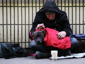 Un sans-abri et son chien dans une rue de Londres, au Royaume-Uni.