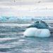Climat : dix investisseurs institutionnels créent trois fonds d'un total de 500millions d'euros